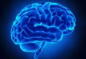 از آسیب های حاد مغزی با تشخیص زود هنگام صرع پایدار پیشگیری کنید