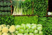 پختن زیاد سبزی ها خاصیت آن ها را از بین میبرد