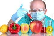 آیا محصولات تراریخته سرطان زا هستند؟