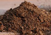 تاثیراتی که خاک بازی بر روی انسان دارد
