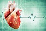 مراقبت های مهم از قلب و عروق
