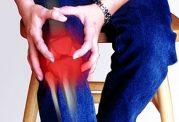 با استفاده از اکالیپتوس آرتروز را درمان کنید