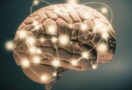 تقویت مغز با برخی خوراکی ها