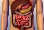 ارتباط میان اختلالات رفتاری و بیماری های دستگاه گوارش