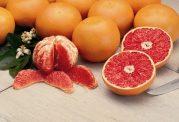 خوردن این 5 ماده غذایی را در فصل زمستان فراموش نکنید