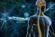 موفقیتی جدید برای درمان ام اس (MS)