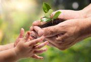 اهمیت حفاظت از محیط زیست برای سلامتی
