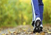بازسازی بافت آسیب دیده قلب با پیاده روی تند