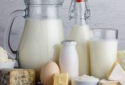 لبنیات اثر آنتی بیوتیک را کم می کند!