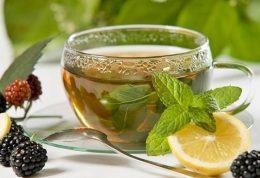 هر آنچه لازم است در مورد چای بدانید