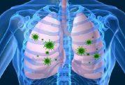 فعال شدن ویروس های سلول های بی تحرک بافت ریه با این نانوذرات