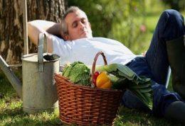 راز جوان ماندن در خواب بعد از ناهار است