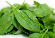 با سبزیجات های برگدار سالم آشنا شوید