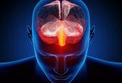 عوامل تاثیرگذار بر ضعف حافظه