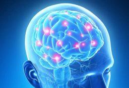 مغز خود را به صورت سالانه چکاپ کنید