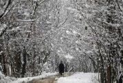 ارتباط حمله ناگهانی قلبی و بارش برف