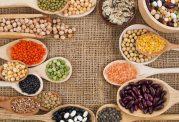 مزایای رژیمهای سرشار از پروتئین گیاهی چیست؟