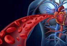 5 راهکار برای بهبود جریان خون در بدن