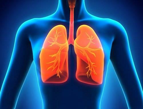 استفاده از سلول های بنیادی برای ترمیم ریه های آسیب دیده