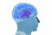 ابتلا به انواع بیماری های ذهنی با سطح گلوکز خون