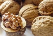 اهمیت مصرف دانه های روغنی برای سلامتی