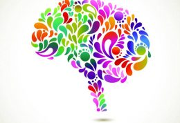 مقایسه عملکرد مغز و دستگاه عصبی در جانوران
