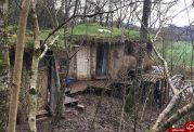 مهاجرت زوج انگلیسی به جنگل به علت آلودگی هوا