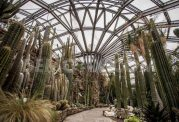 نخستین باغ گیاه شناسی در جهان