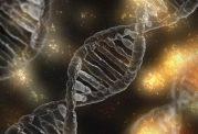 مقابله با سلولهای سرطان زا
