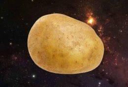 محیا شدن امکان کشت سیب زمینی در مریخ