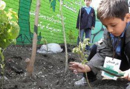 راه اندازی مدرسه طبیعت در ایران