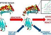 آزمایش واکنش بدن نسبت به داروهای درمان ایدز با استفاده از رایانه