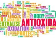 اهمیت دریافت آنتی اکسیدان برای بدن