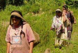 سالم ترین قلب ها به این قبیله تعلق دارند