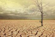 آیا کوتاه شدن قد و گرم شدن زمین با هم ارتباط دارند؟