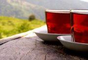 آیا چای از بیماری ها جلوگیری میکند؟