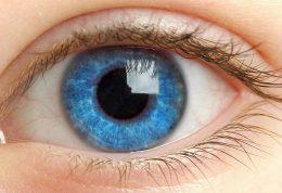 راجع به سکته ی چشم چه می دانید؟