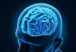 نگهداری از اطلاعات مغز با این تمرین های ساده