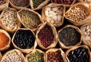 منابع ارزان قیمت پروتئین
