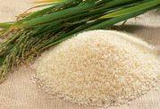 طرفداران برنج دودی این مطلب را از دست ندهند