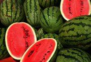هندوانه کلسترول بد خون را کاهش می دهد