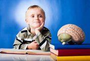 10 غذا برای افزایش هوش کودکان