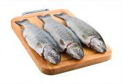 استفاده از ماهی منجمد خوب است یا خیر؟