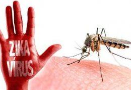 ارزیابی هزینه اقتصادی و اجتماعی ویروس زیکا