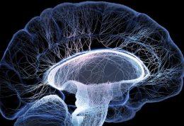 محاسبه سن ریسک ابتلا به بیماری آلزایمر