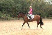 اسب سواری و افزایش توانایی مغزی کودکان