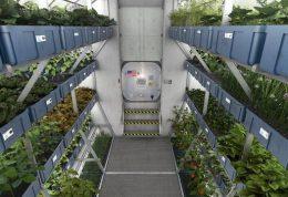 تولید غذا در طول ماموریت فضانوردان امکان پذیر می شود
