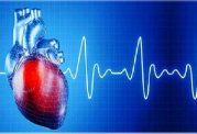 زنان بلند قامت در معرض مشکلات قلبی