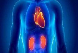 ابتلا به امراض قلبی با بیماری های کلیوی