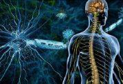 اسکلروز جانبی آمیوتروفیک چیست؟